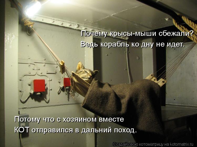 Котоматрица: Потому что с хозяином вместе КОТ отправился в дальний поход. Почему крысы-мыши сбежали? Ведь корабль ко дну не идет.