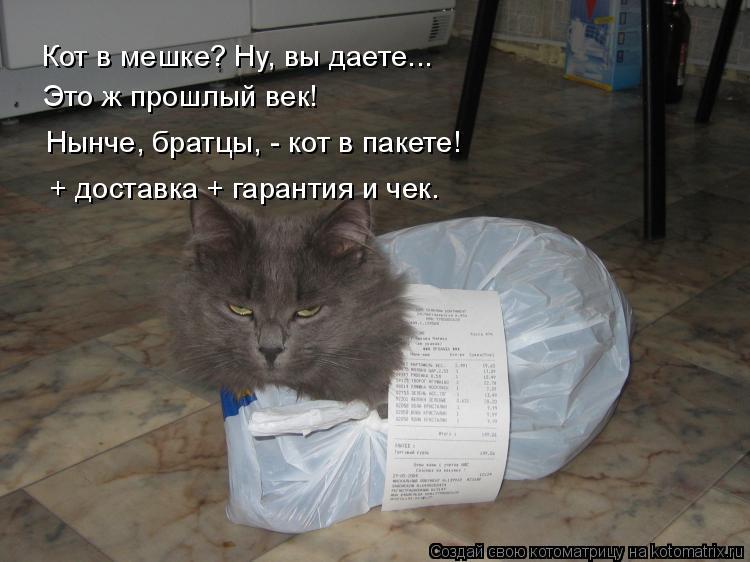 Котоматрица - 4 - Страница 10 Kotomatritsa_Q