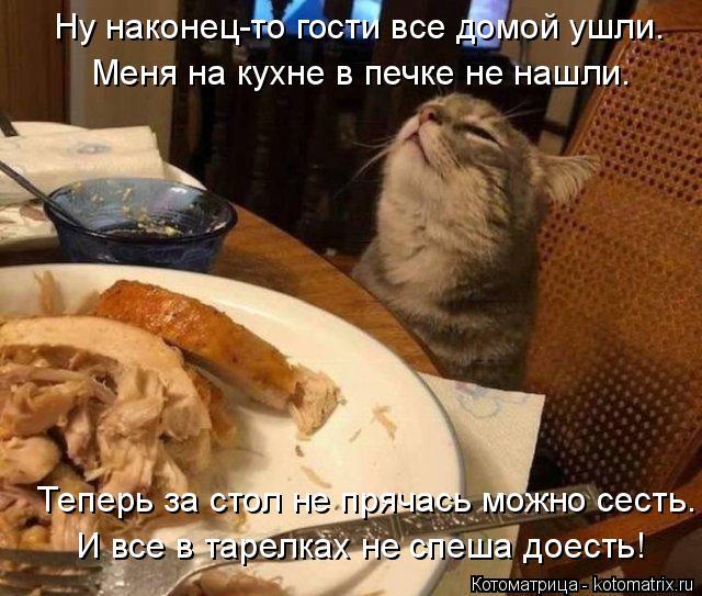 Котоматрица: Меня на кухне в печке не нашли.  Теперь за стол не прячась можно сесть. Ну наконец-то гости все домой ушли. И все в тарелках не спеша доесть!