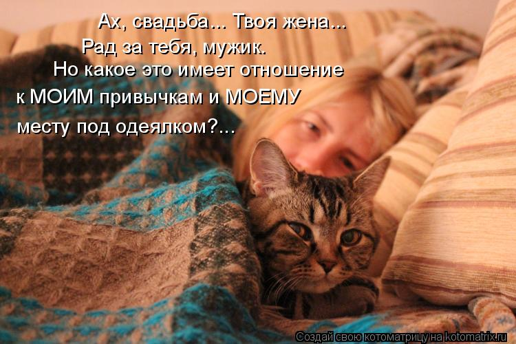 Котоматрица: Ах, свадьба... Твоя жена... Рад за тебя, мужик. Но какое это имеет отношение к МОИМ привычкам и МОЕМУ  месту под одеялком?...