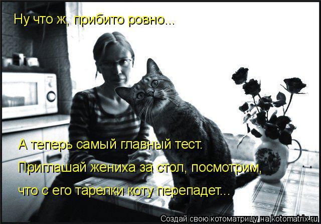Котоматрица: Ну что ж, прибито ровно... А теперь самый главный тест.  Приглашай жениха за стол, посмотрим,  что с его тарелки коту перепадет...