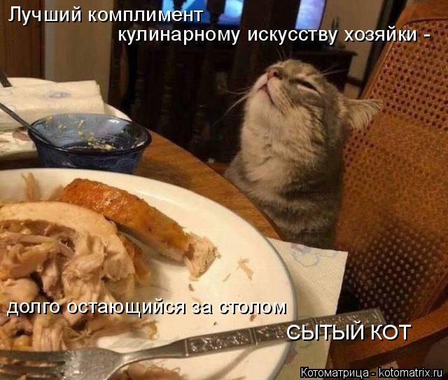 Котоматрица: Лучший комплимент  кулинарному искусству хозяйки -  долго остающийся за столом СЫТЫЙ КОТ