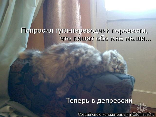 Котоматрица: Попросил гугл-переводчик перевести,  что пищат обо мне мыши... Теперь в депрессии