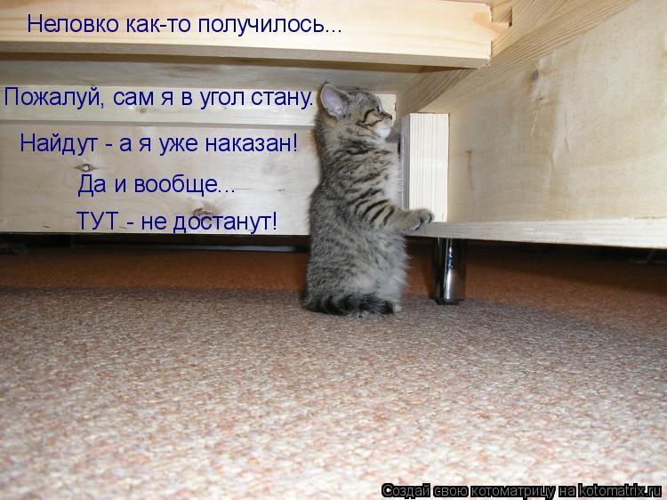 Котоматрица: Неловко как-то получилось... Пожалуй, сам я в угол стану. Найдут - а я уже наказан! Да и вообще...  ТУТ - не достанут!