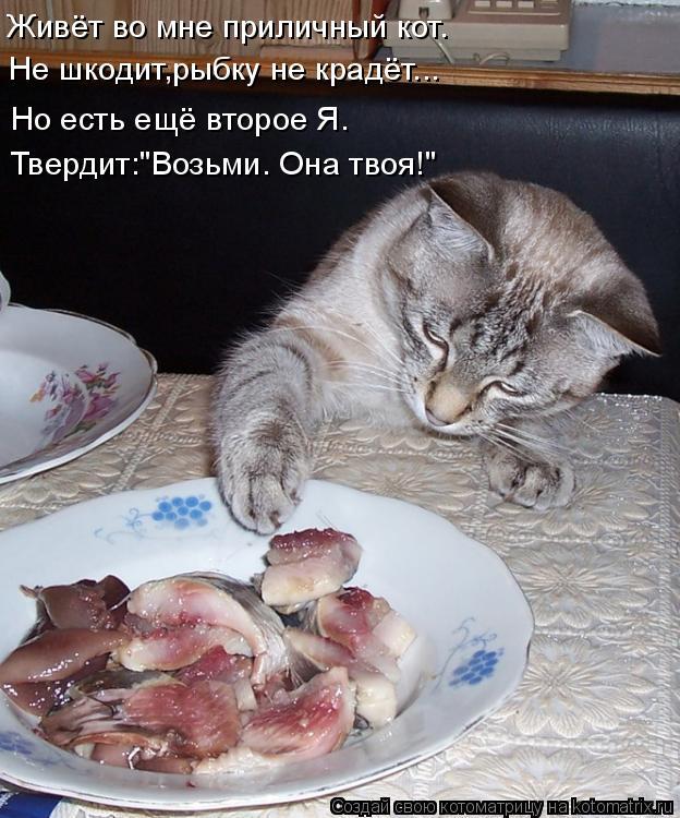 """Котоматрица: Живёт во мне приличный кот. Не шкодит,рыбку не крадёт... Но есть ещё второе Я. Твердит:""""Возьми. Она твоя!"""""""