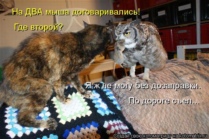 Котоматрица: На ДВА мыша договаривались! Где второй? Я ж не могу без дозаправки. По дороге съел...