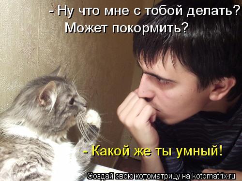 Котоматрица: - Ну что мне с тобой делать? Может покормить? - Какой же ты умный!