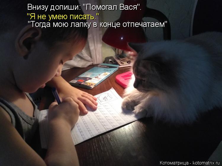 """Котоматрица: Внизу допиши: """"Помогал Вася"""". """"Я не умею писать."""" """"Тогда мою лапку в конце отпечатаем"""""""