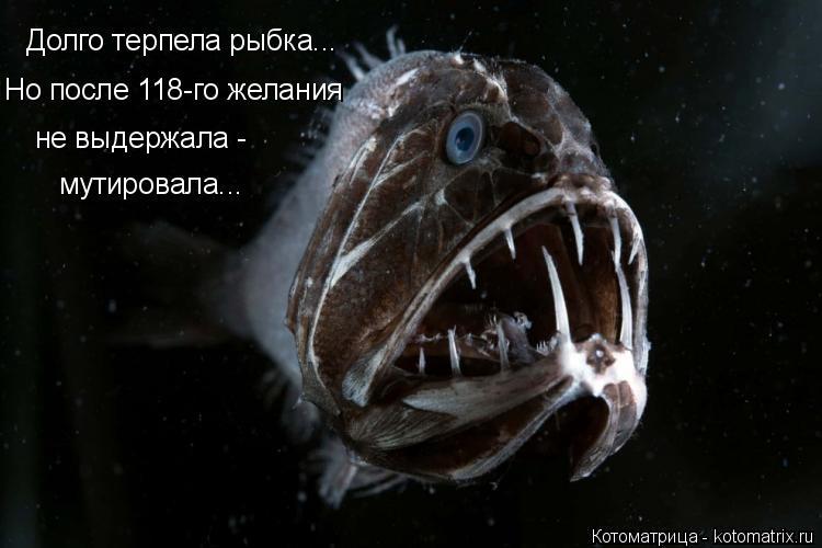 Котоматрица: Долго терпела рыбка... Но после 118-го желания  не выдержала -  мутировала...