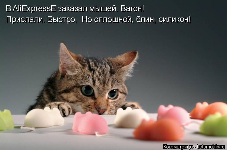 Котоматрица: В AliExpressЕ заказал мышей. Вагон! Прислали. Быстро.  Но сплошной, блин, силикон!