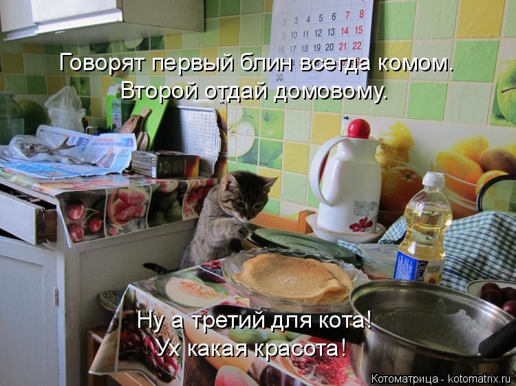 Котоматрица: Ну а третий для кота! Ух какая красота! Второй отдай домовому. Говорят первый блин всегда комом.