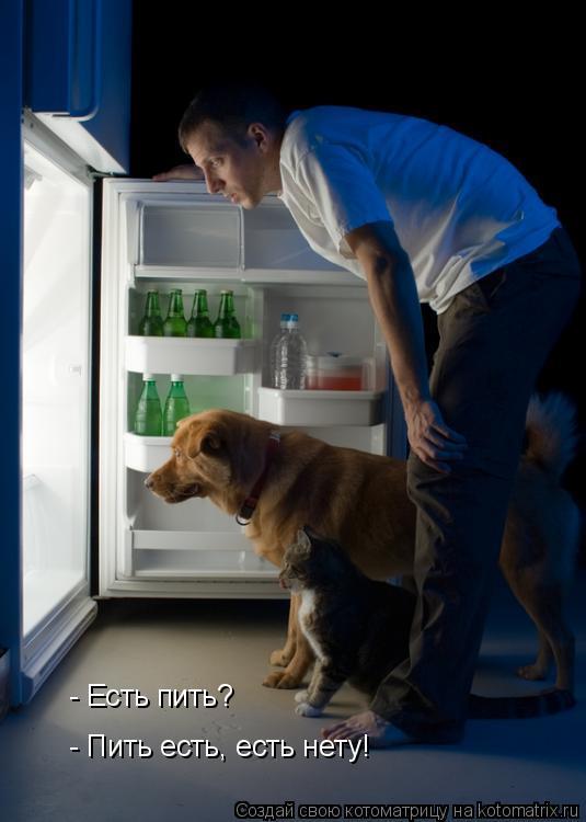 Котоматрица: - Есть пить? - Пить есть, есть нету!