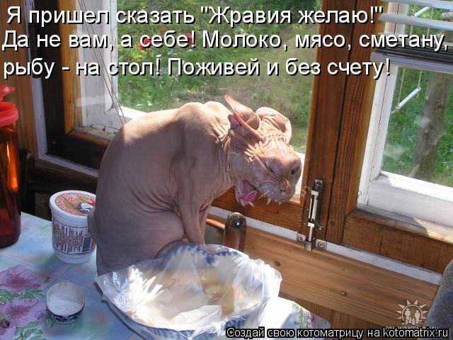 """Котоматрица: Я пришел сказать """"Жравия желаю!""""  Да не вам, а себе! Молоко, мясо, сметану, рыбу - на стол! Поживей и без счету!"""
