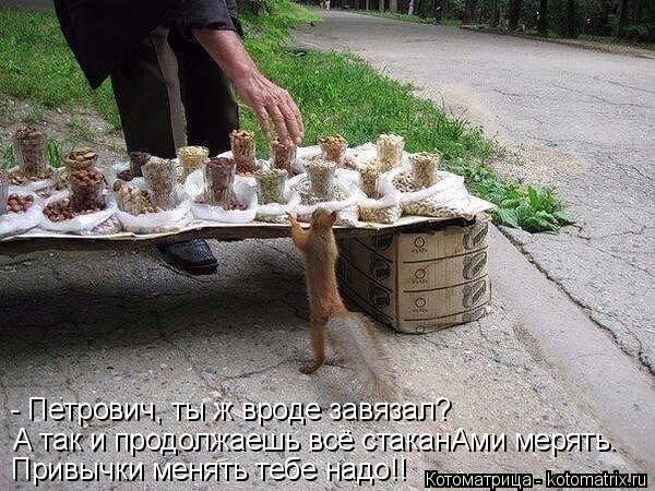 Котоматрица: - Петрович, ты ж вроде завязал? А так и продолжаешь всё стаканАми мерять. Привычки менять тебе надо!!