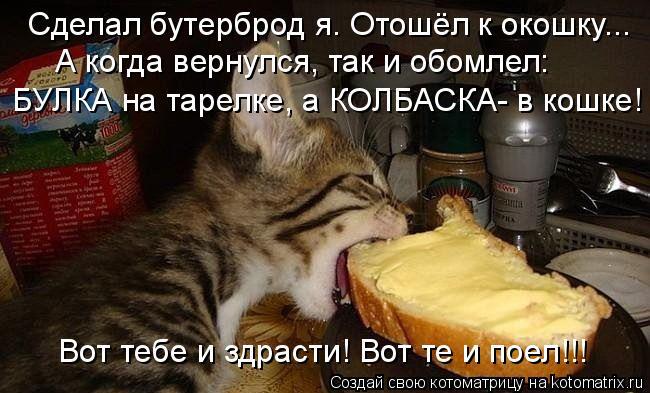 Котоматрица: Сделал бутерброд я. Отошёл к окошку... А когда вернулся, так и обомлел: БУЛКА на тарелке, а КОЛБАСКА- в кошке! Вот тебе и здрасти! Вот те и поел!!!