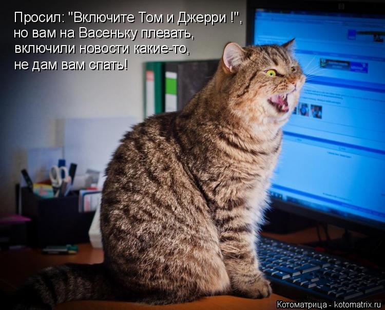 """Котоматрица: Просил: """"Включите Том и Джерри !"""", но вам на Васеньку плевать, включили новости какие-то, не дам вам спать!"""