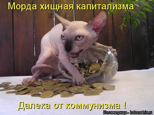 Котоматрица: Морда хищная капитализма Далека от коммунизма !