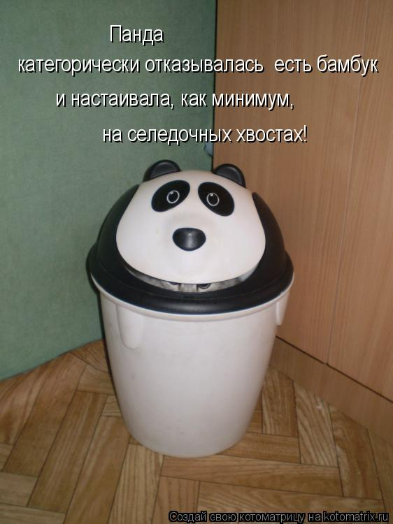 Котоматрица: Панда  категорически отказывалась  есть бамбук  и настаивала, как минимум,  на селедочных хвостах!