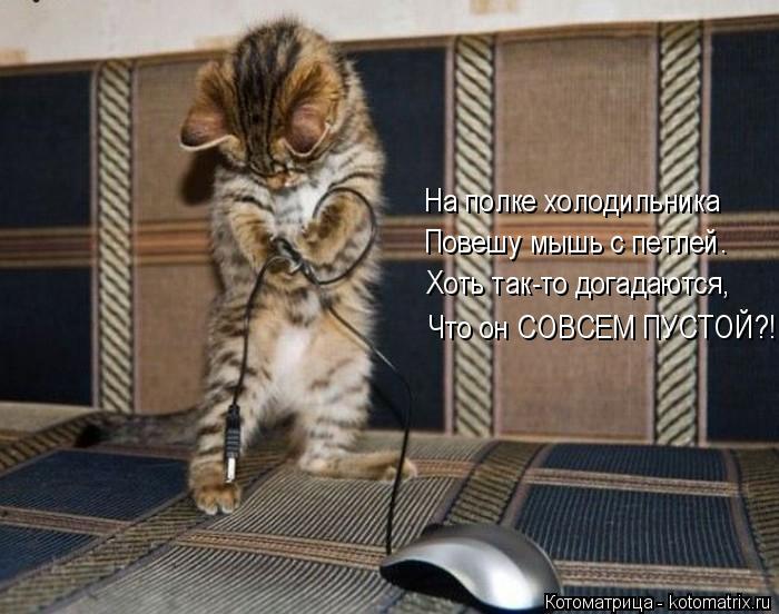 Котоматрица: На полке холодильника Повешу мышь с петлей. Хоть так-то догадаются, Что он СОВСЕМ ПУСТОЙ?!!