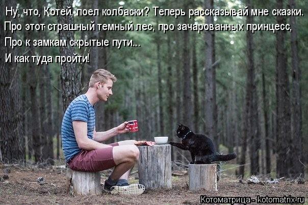 Котоматрица: Ну, что, Котей, поел колбаски? Теперь рассказывай мне сказки.  Про этот страшный темный лес, про зачарованных принцесс, Про к замкам скрытые п