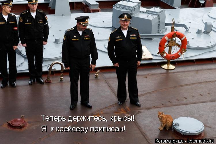 Котоматрица: Теперь держитесь, крысы! Я  к крейсеру приписан!