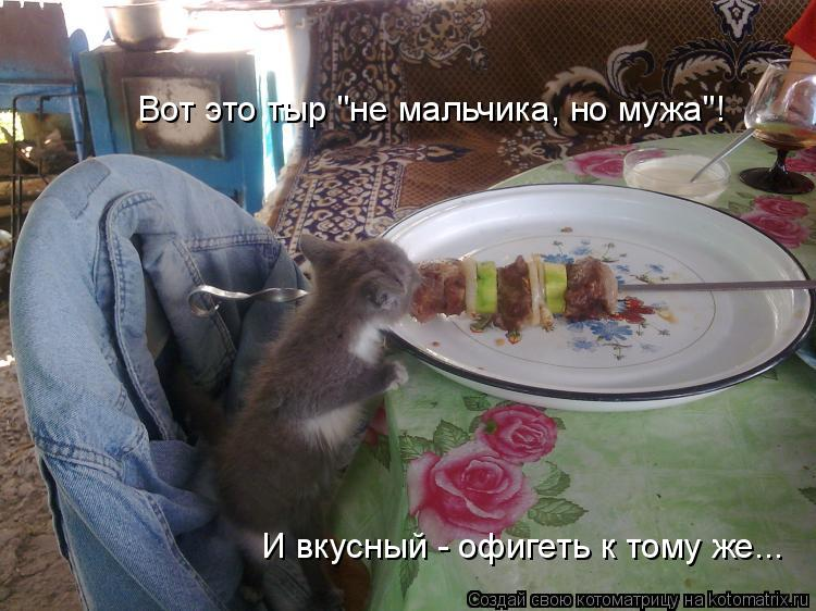 """Котоматрица: Вот это тыр """"не мальчика, но мужа""""! И вкусный - офигеть к тому же..."""