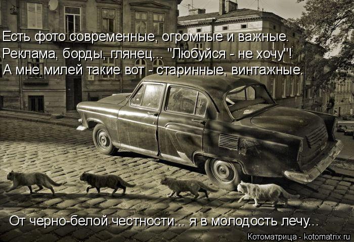 """Котоматрица: Есть фото современные, огромные и важные. Реклама, борды, глянец... """"Любуйся - не хочу""""! А мне милей такие вот - старинные, винтажные. От черно-бе"""