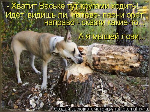 Котоматрица: А я мышей лови...  - Хватит Ваське тут кругами ходить! Идёт, видишь ли, налево- песни орёт, направо - сказки какие-то...