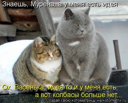 Котоматрица: Знаешь, Мурена, а у меня есть идея Ох, Васенька, идея-то и у меня есть, а вот колбасы больше нет...