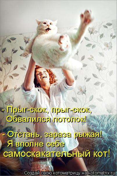 Котоматрица: - Прыг-скок, прыг-скок, Обвалился потолок! - Отстань, зараза рыжая! Я вполне себе  самоскакательный кот!