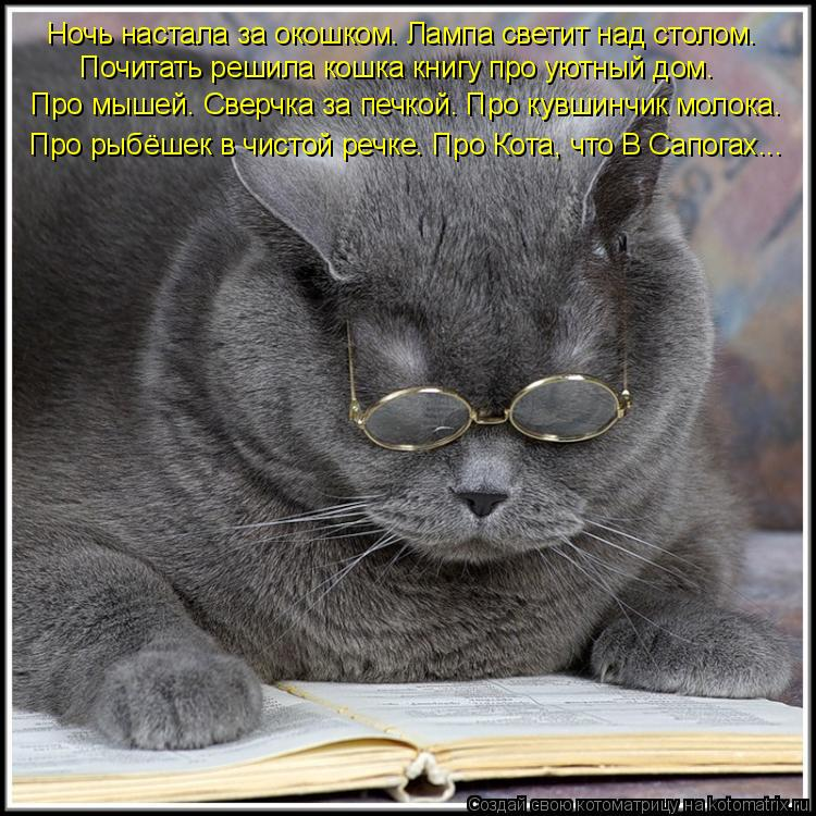 Котоматрица: Ночь настала за окошком. Лампа светит над столом. Почитать решила кошка книгу про уютный дом. Про мышей. Сверчка за печкой. Про кувшинчик мол