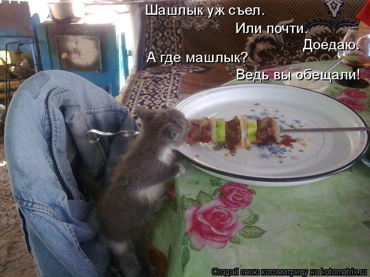 Котоматрица: Шашлык уж съел. Или почти. Доедаю. А где машлык? Ведь вы обещали!