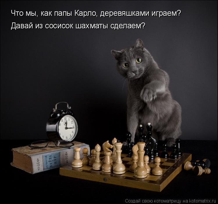 Котоматрица: Что мы, как папы Карло, деревяшками играем? Давай из сосисок шахматы сделаем?