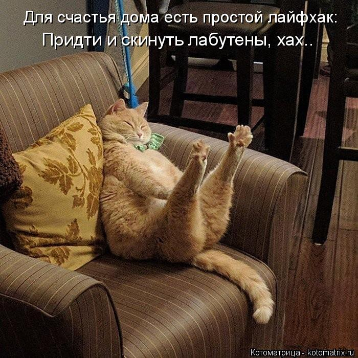 Котоматрица: Придти и скинуть лабутены, хах.. Для счастья дома есть простой лайфхак: