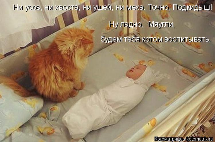 Котоматрица: будем тебя котом воспитывать. Ну ладно,  Мяугли, Ни усов, ни хвоста, ни ушей, ни меха. Точно, Подкидыш!