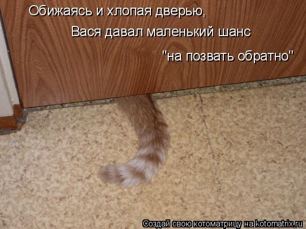 """Котоматрица: Обижаясь и хлопая дверью, Вася давал маленький шанс  """"на позвать обратно"""""""