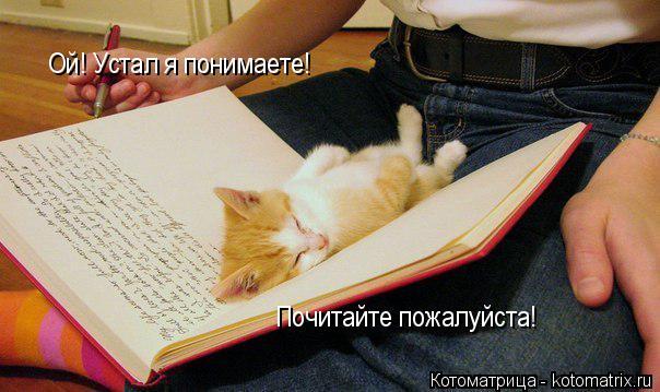 Котоматрица: Ой! Устал я понимаете! Почитайте пожалуйста!