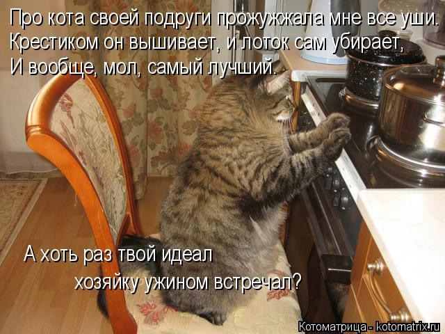 Котоматрица: Про кота своей подруги прожужжала мне все уши.  Крестиком он вышивает, и лоток сам убирает,  И вообще, мол, самый лучший.  А хоть раз твой идеал