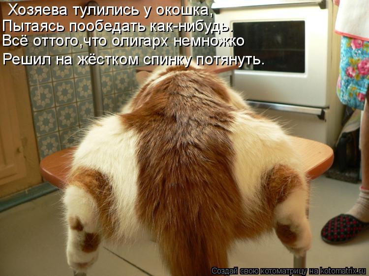 Котоматрица: Хозяева тулились у окошка, Всё оттого,что олигарх немножко Пытаясь пообедать как-нибудь. Решил на жёстком спинку потянуть.