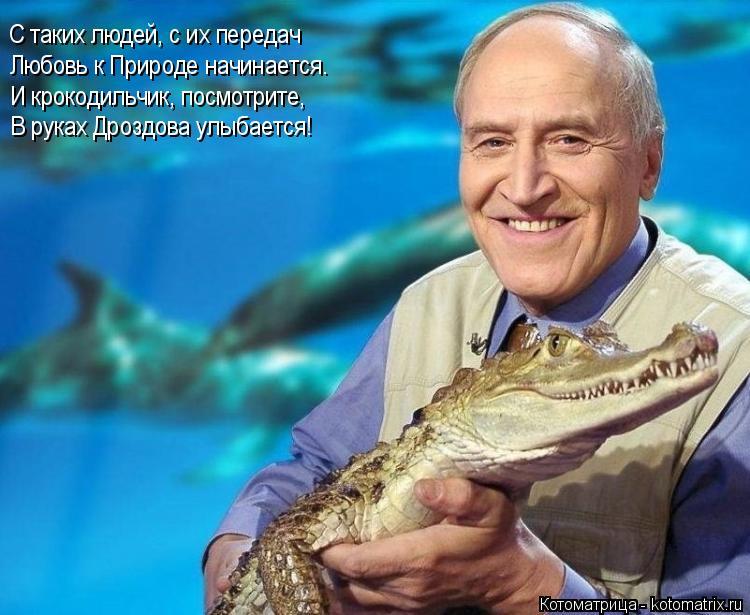 Котоматрица: С таких людей, с их передач Любовь к Природе начинается. И крокодильчик, посмотрите, В руках Дроздова улыбается!