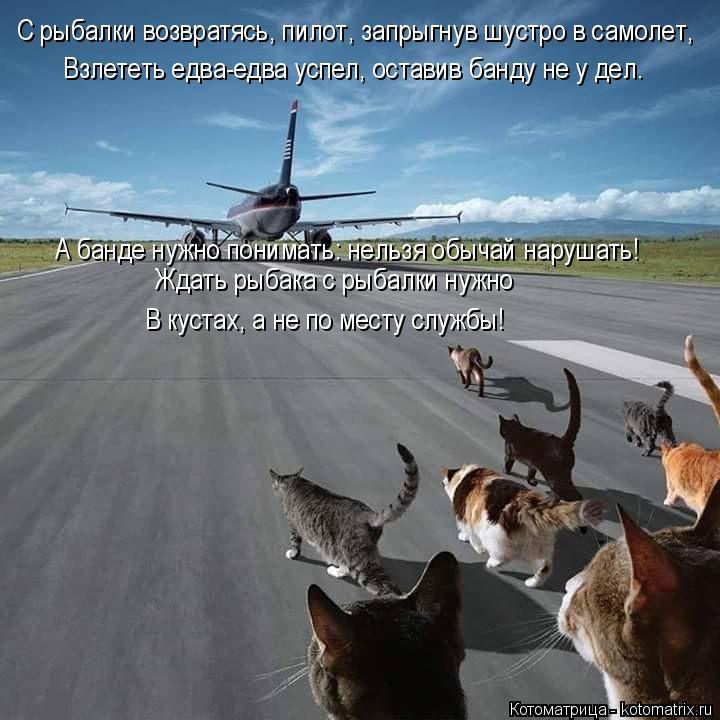 Котоматрица: С рыбалки возвратясь, пилот, запрыгнув шустро в самолет, Взлететь едва-едва успел, оставив банду не у дел. А банде нужно понимать: нельзя обы?