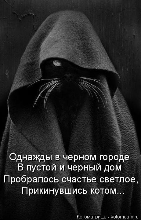 Котоматрица: Однажды в черном городе В пустой и черный дом Пробралось счастье светлое, Прикинувшись котом...