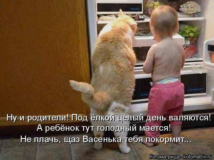 Котоматрица: Ну и родители! Под ёлкой целый день валяются! А ребёнок тут голодный мается! Не плачь, щаз Васенька тебя покормит...