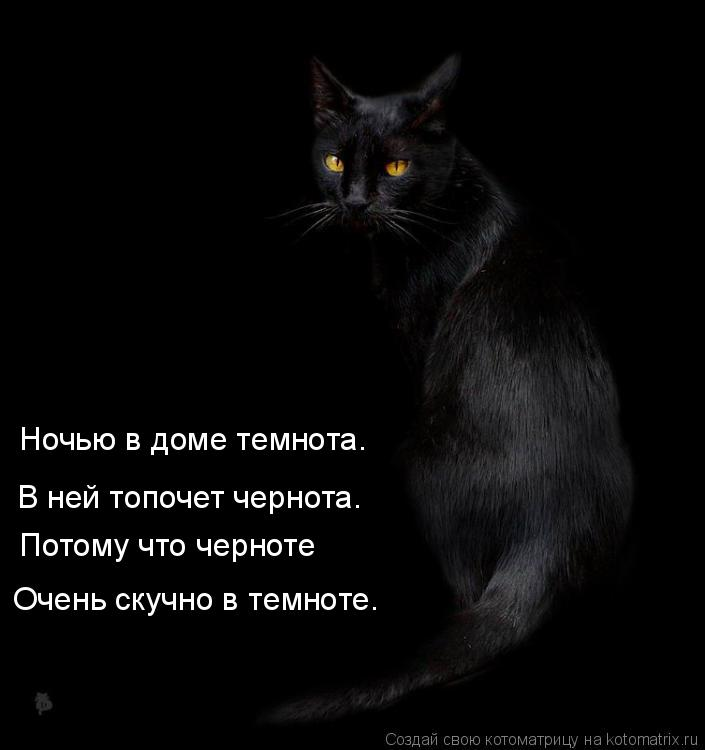 Котоматрица: Ночью в доме темнота. Потому что черноте Очень скучно в темноте. В ней топочет чернота.