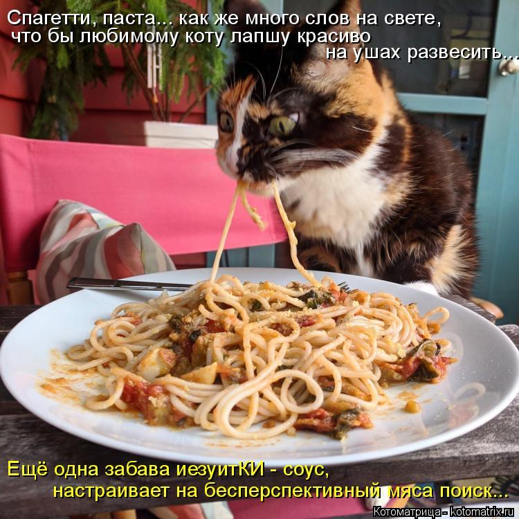 Котоматрица: Спагетти, паста... как же много слов на свете, что бы любимому коту лапшу красиво  на ушах развесить... настраивает на бесперспективный мяса п?
