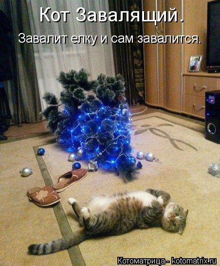 Котоматрица: Кот Завалящий.  Завалит елку и сам завалится.