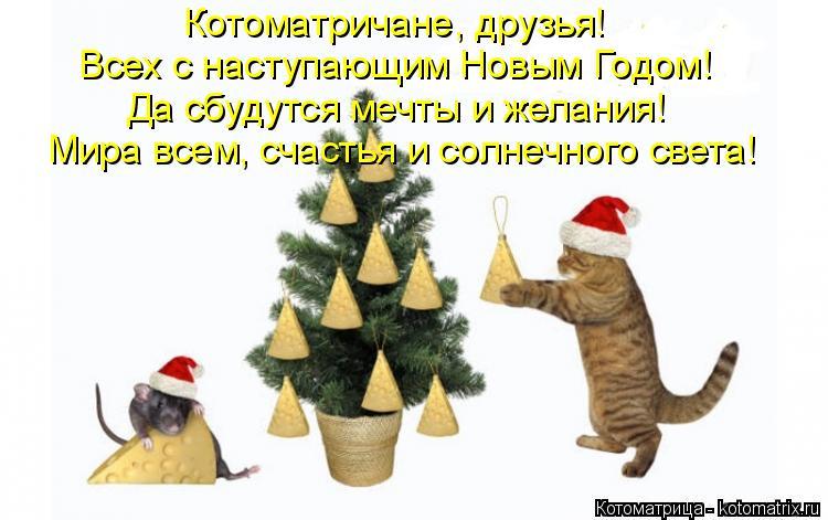Котоматрица: Котоматричане, друзья! Всех с наступающим Новым Годом! Да сбудутся мечты и желания! Мира всем, счастья и солнечного света!