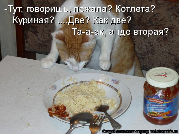 Котоматрица: -Тут, говоришь, лежала? Котлета? Куриная? ....Две? Как две? Та-а-ак, а где вторая?