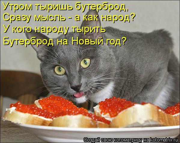 Котоматрица: Утром тыришь бутерброд,  Сразу мысль - а как народ? У кого народу тырить Бутерброд на Новый год?