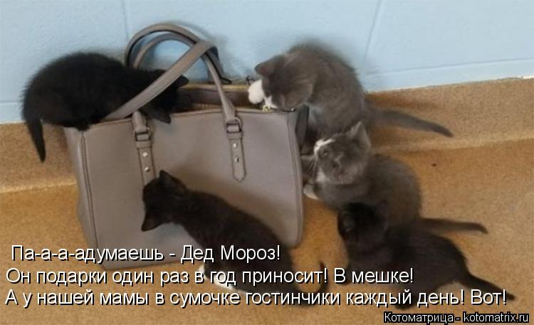 Котоматрица: А у нашей мамы в сумочке гостинчики каждый день! Вот! Он подарки один раз в год приносит! В мешке! Па-а-а-адумаешь - Дед Мороз!
